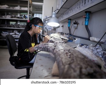 MAHA SARAKHAM, THAILAND - October 13, 2017 -Dinosaur Fossil preparation in the Paleontology Research Center, Mahasarakham University
