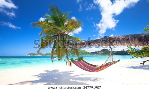 Mahe Island, Seychellen - Romantische, gemütliche Hängematte im Schatten der Palme am tropischen Strand am Meer