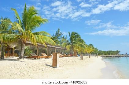 Mahogany beach at Roatan island