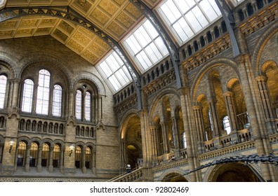 The main hall in the Natural History museum, London.
