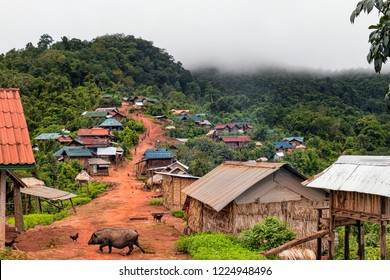 Main Road along Mountaintop Ridge in Traditional Akha Hill Tribe Village. Livestock Animals Freely Wandering Street in Small Ethnic Village in Nam Ha Protected Area. (Luang Namtha, Laos).