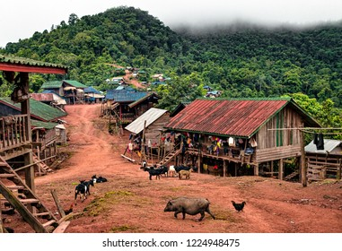 Main Road in Traditional Akha Hill Tribe Village. Livestock Animals Freely Roaming Street in Mountaintop Village in Nam Ha Protected Area. View of Wooden Shacks and Green Jungle (Luang Namtha, Laos).