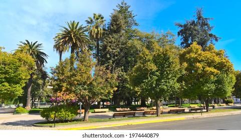 Main touristic place in Talca (Chile): Plaza de Armas park in the historic center.