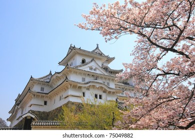 main tower of the UNESCO world heritage: Himeji Castle and spring cherry blossoms, Japan