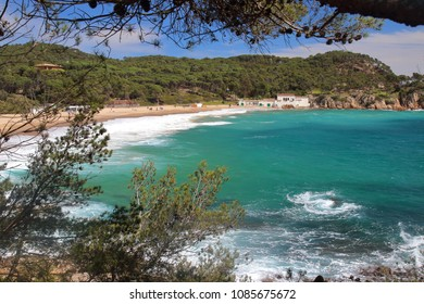 Main view of Castell beach, one of the most amazing virgin spots of la Costa Brava seaside, Palamós, Girona, Catalonia, Spain.