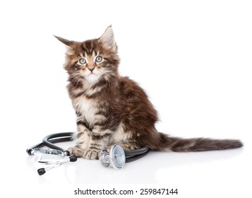 maine coon cat with a stethoscope. isolated on white background
