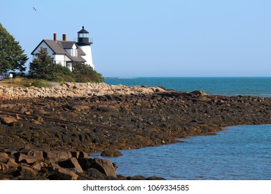 Maine lighthouse in the summer light