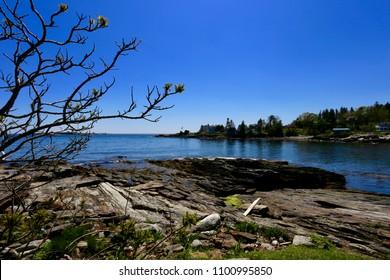 Maine on the Rocks