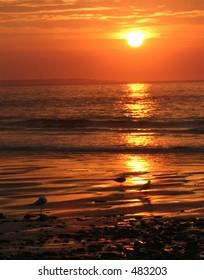 Maine Sunrise 2005
