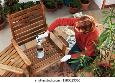 Maintaining an Outdoor Bench, Sanding and Painting
