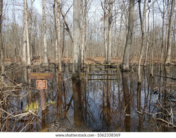 maintenance road sign with wood fence flooded with water in the forest