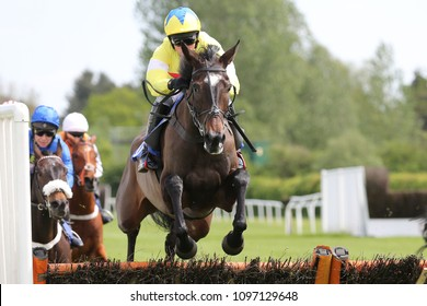 Maire Banrigh ridden by Harry Skelton and trained by brother Dan Skelton jumps the last hurdle at Market Rasen Races : Market Rasen Racecourse, Lincs, UK : 11 May 2018 : Pic Mick Atkins