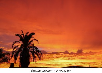 Majestic fiery orange sunset in San Diego, California on June 29, 2019.