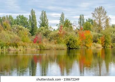 Majestic lake in John Hendry Park in Vancouver, Canada.