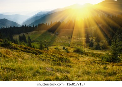 Majestic landscape of mountains. A view of the misty tops of the mountains in the distance. Morning misty coniferous forest hills in fog and rays of sunlight. Travel background.