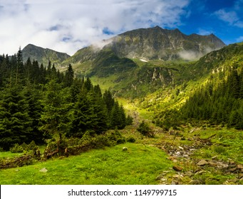 Majestic landscape of summer mountains. View of  coniferous forest hills in fog and rays of sunlight.Fagaras Mountains.Transylvania. Romania. Travel background.