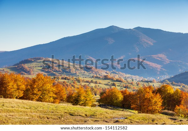 Majestic morning mountain landscape with colorful forest and blue sky. Autumn leaves. Carpathian, Ukraine, Europe. Beauty world.