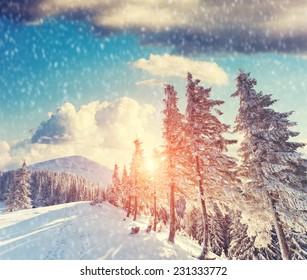 Majestic mountain landscape glowing by sunlight and blue sky. Dramatic wintry scene. Carpathian, Ukraine, Europe. Beauty world. Retro vintage filter. Instagram toning effect. Happy New Year!