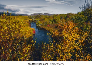 majestic nature   in Thingvellir National Park Iceland in autumn in sunny weather