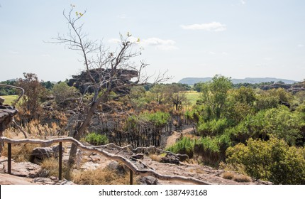 Majestic scenic view from Ubirr Rock under a blue sky with native greenery and large rock formation in Kakadu, Australia