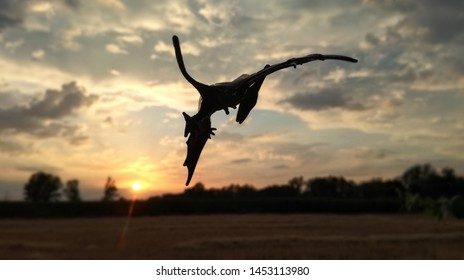 Majestic silhouette of a Pteranodon at nightfall. Carnivorous dinosaur and lethal predator flying over Spanish National territory, UE airspace, over a rural area. A reptile from the Cretaceous period.