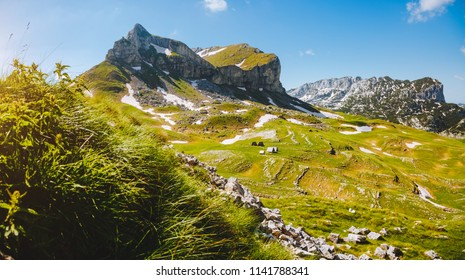 Majestic summer day in the Durmitor National park. Location place Sedlena Greda, village Zabljak, Montenegro, Balkans, Europe. Scenic image of popular travel destination. Discover the beauty of earth.