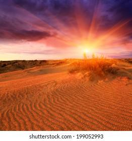 majestic sunset in sand desert