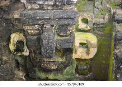 Majestic Tikal Ruins, in Guatemala.