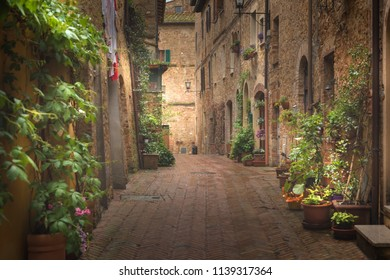 Majestic traditional decorated street with colorful flowers and rural rustic houses, Pienza, Tuscany, Italy, Europe