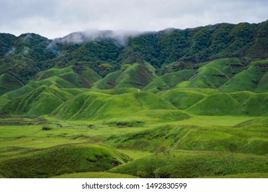 Majestic view of Dzukou Valley, Nagaland/ India month of July 2019