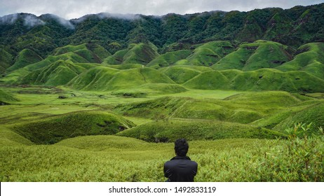 Majestic view of the lush green Dzukou Valley in the border of Nagaland and Manipur, India .