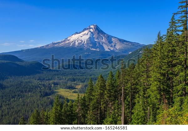 Vue majestueuse du mont Hood par une journée ensoleillée et lumineuse pendant les mois d'été.