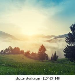 Majestic view on beautiful fog mountains in mist landscape. Dramatic unusual scene. Travel background. Exploring beauty world. Carpathian mountains. Ukraine. Europe.