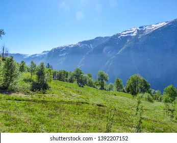 A majestic view on Eidfjord from Kjeasen, Norway. Slopes of the mountains are overgrown with lush green grass.  Taller parts of the mountains are barren. Sunny and clear day perfect for a hike.