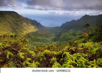 Majestic views of Napali coast from Kalalau lookout, Kauai island