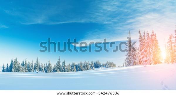 Majestätische Winterlandschaft, die morgens durch Sonnenlicht strahlt. Dramatische Winzerszene. Lage Karpaten, Ukraine, Europa. Schönheitswelt. Retro und Vintage Stil, weicher Filter. Instagram-Toneffekt.