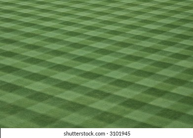 Major League Baseball Grass Turf