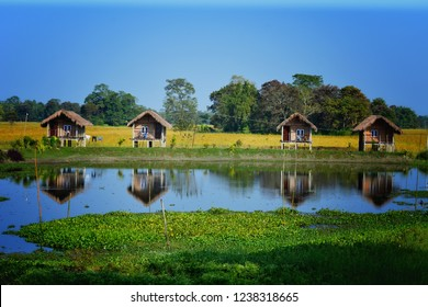 majuli bigest island in river brahmaputra