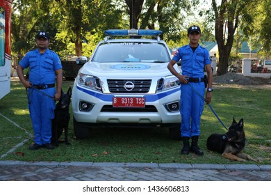 MAKASSAR, INDONESIA - JUNE 26 2019: Dogs assigned to track narcotics. This dog is called K9