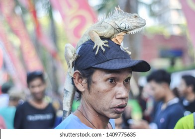 Makassar, Indonesia - November 1, 2015: An iguana perches on man's head during car free day event at Losari Beach.