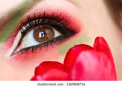 Makeup brown green eyes with red and green eyeshadow close-up with Tulip.