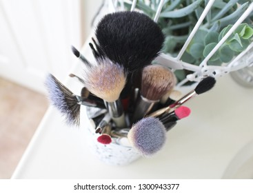 Makeup brushes next to succulent plant.