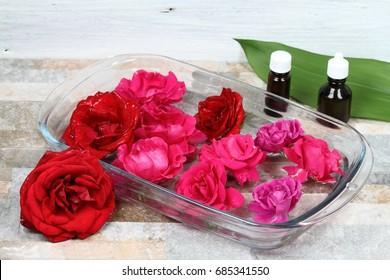 Making Bach flower remedy from beautiful roses.  Bach flower remedies is natural method of healing