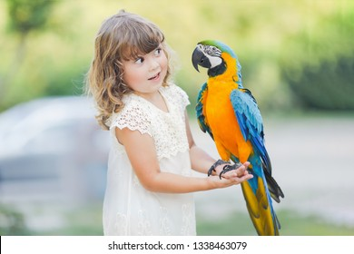 Making photo of exotic animals. Little girl with macaw parrot in the zoo