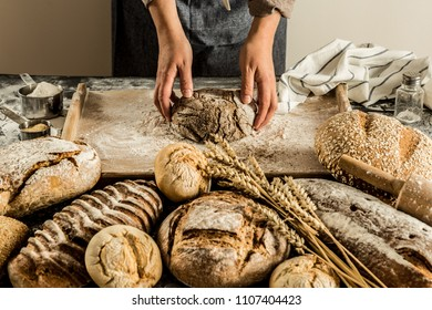 Making whole grain loaf of bread - small bakery scenery. Raw dough in baker's hands.
