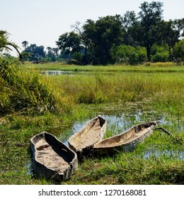 Makoro dugout canoes traditionally hand carved out of a tree trunk, Okavango Delta, Botswana, Africa