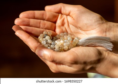 Mala beads held in the hands of a woman in the warm and soft light of the sun. The benefits and uses of mala beads in yoga practice and meditation.