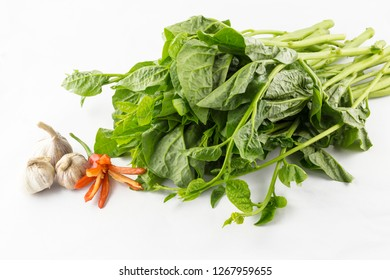 Malabar spinach isolated on white