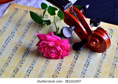 MALACCA, MALAYSIA - 12 August, 2014 : Violin with sheet music and pink rose on black background captured on 12 August, 2014. Still life concept
