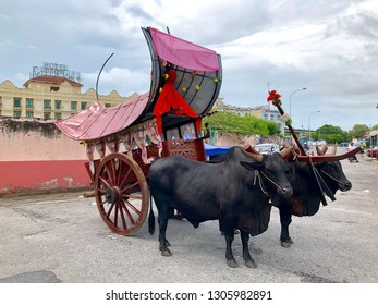 Malacca, Malaysia - December 11, 2018: View of traditional bullock cart or ox cart, a kind of animal vehicle, in Malacca, Malaysia.